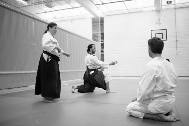 bsi-aikido-8828.jpg