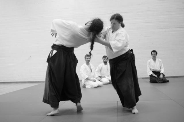 bsi-aikido-8880.jpg